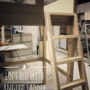 Loft Bed with Angled Ladder
